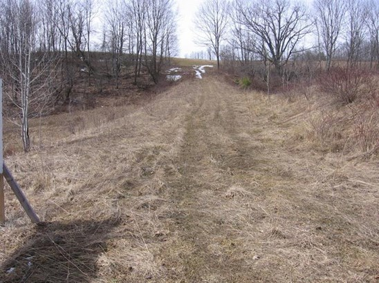 0 County Road 3 -lot 3, Unadilla, NY - USA (photo 2)