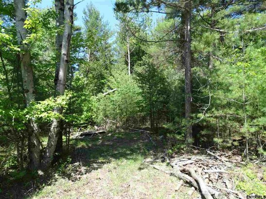 Lot 34.13 Andrew Pond Rd, Chestertown, NY - USA (photo 1)