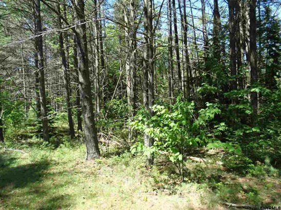 Lot 34.13 Andrew Pond Rd, Chestertown, NY - USA (photo 3)