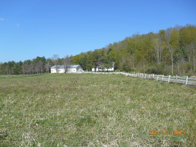 689 Old State Rd., Troupsburg, NY - USA (photo 4)