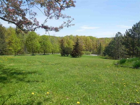263 Hone Rd, Cherry Valley, NY - USA (photo 4)