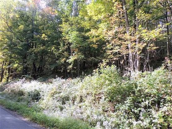 765 Flax Island Road, Otego, NY - USA (photo 5)