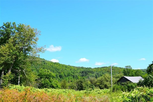 1153 State Highway 165, Roseboom, NY - USA (photo 3)