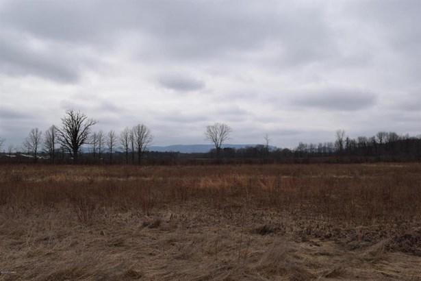 297 Clark, Fortsville, NY - USA (photo 4)