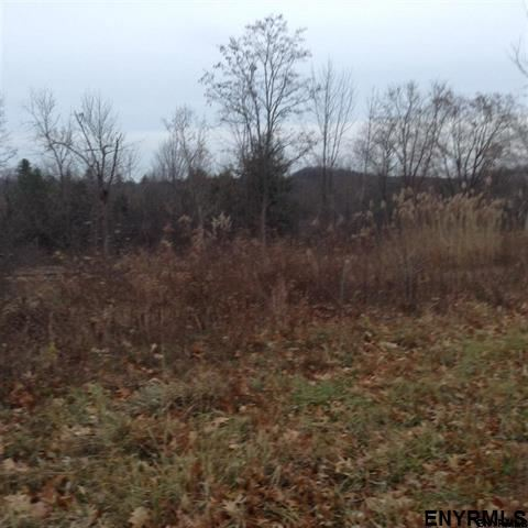 Lot #14 Eastview Dr, Ravena, NY - USA (photo 2)