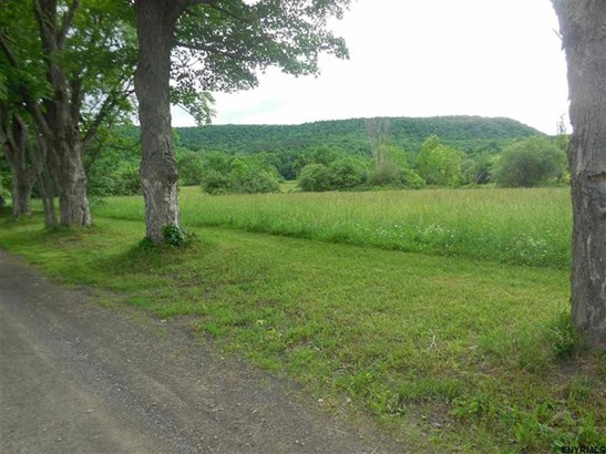 190 Heller Rd, Cherry Valley, NY - USA (photo 2)