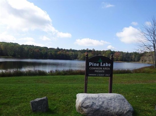 0 Pine Lake Drive, Fallsburg, NY - USA (photo 1)