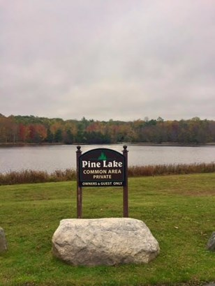 0 Pine Lake Drive, Fallsburg, NY - USA (photo 2)