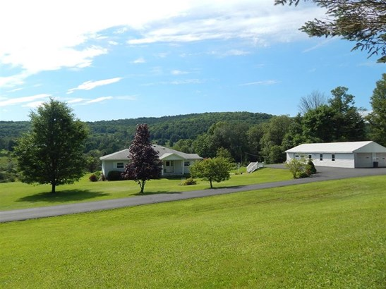 223 Lower Green Street, Otego, NY - USA (photo 1)