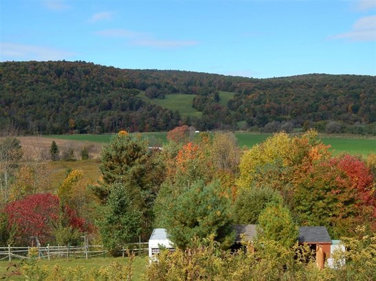 10660 State Highway 357, Franklin, NY - USA (photo 1)