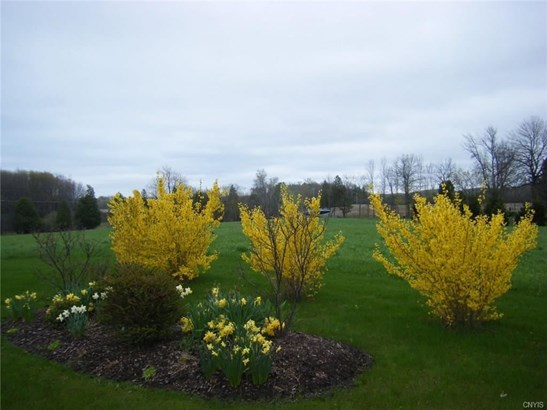 3124 County Line Road, Skaneateles, NY - USA (photo 2)