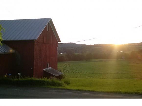 102 County Road 11, Pitcher, NY - USA (photo 1)