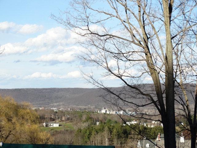 7 Estates Drive, Elmira, NY - USA (photo 1)