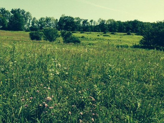 0 County Route 2, Addison, NY - USA (photo 3)