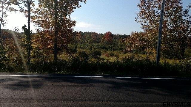 10043 Mariaville Rd, Duanesburg, NY - USA (photo 2)