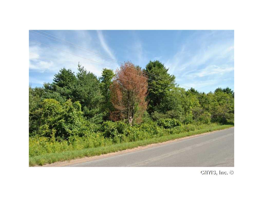 6920 Hodge Road, Watson, NY - USA (photo 2)