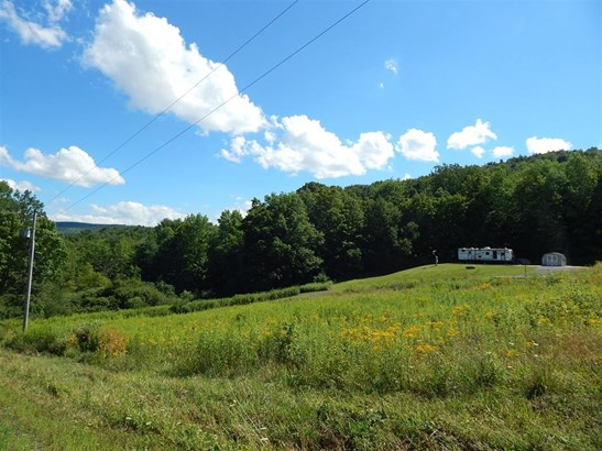 0 Hubble Hollow Road, Cooperstown, NY - USA (photo 2)