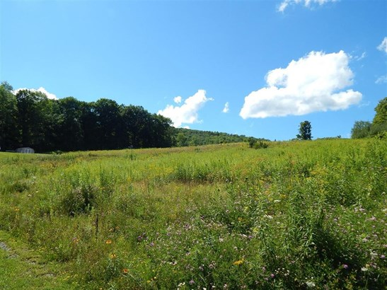 0 Hubble Hollow Road, Cooperstown, NY - USA (photo 3)