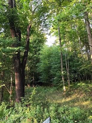 0 Pines Brook Road, Walton, NY - USA (photo 1)