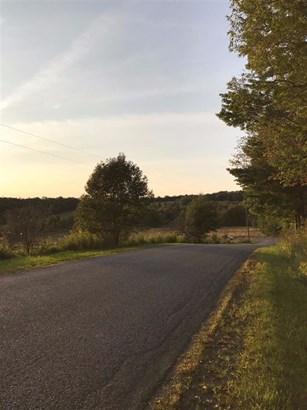 0 Pines Brook Road, Walton, NY - USA (photo 3)