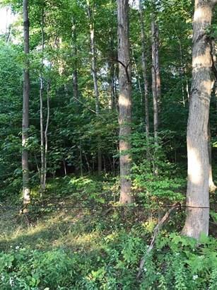 0 Pines Brook Road, Walton, NY - USA (photo 4)