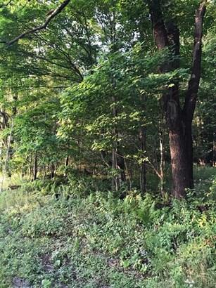 0 Pines Brook Road, Walton, NY - USA (photo 5)