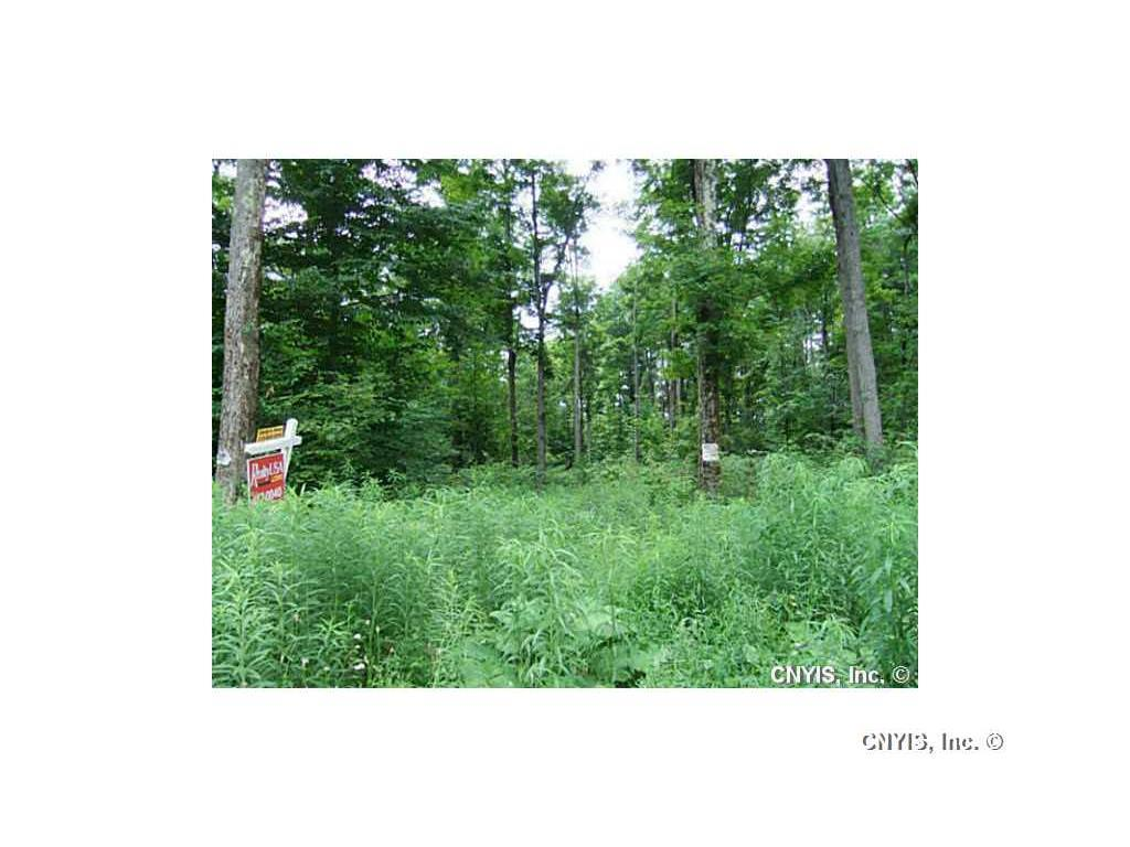 Lot 10 Magpie Lane, Truxton, NY - USA (photo 1)