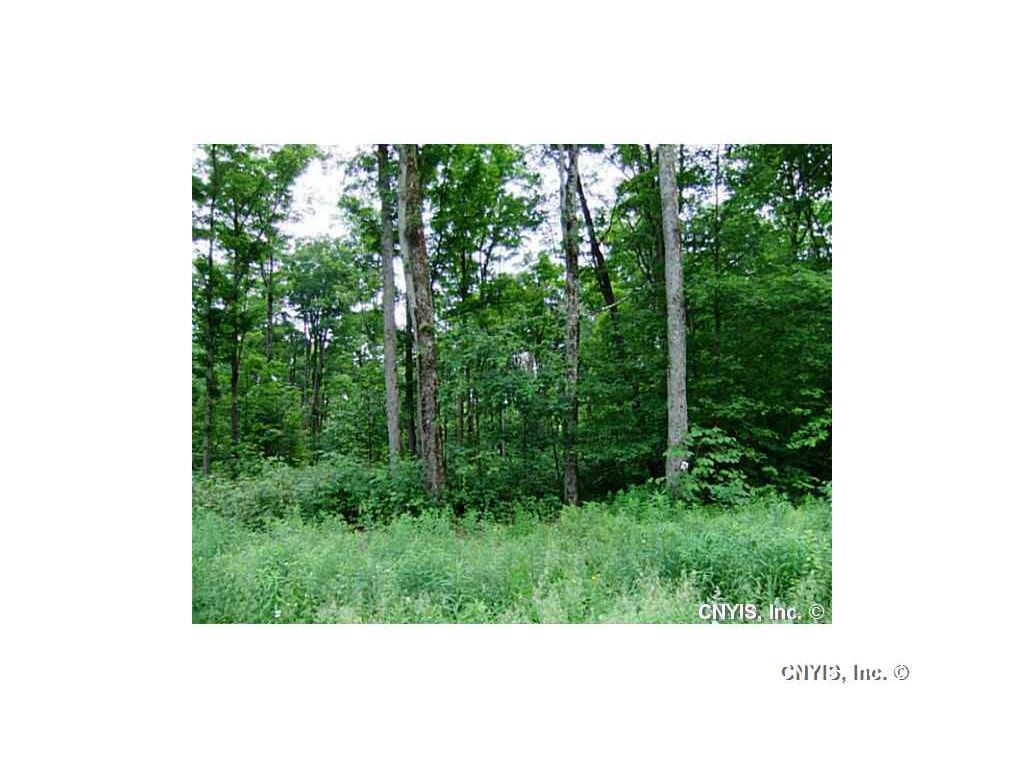 Lot 10 Magpie Lane, Truxton, NY - USA (photo 2)