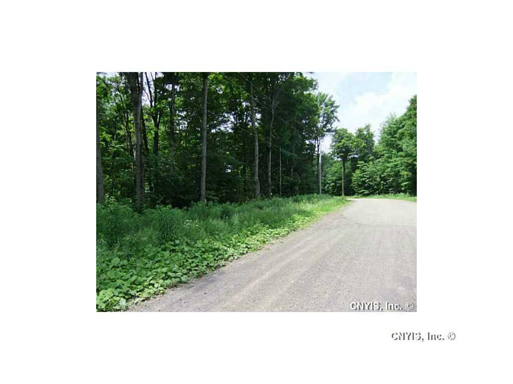Lot 10 Magpie Lane, Truxton, NY - USA (photo 3)