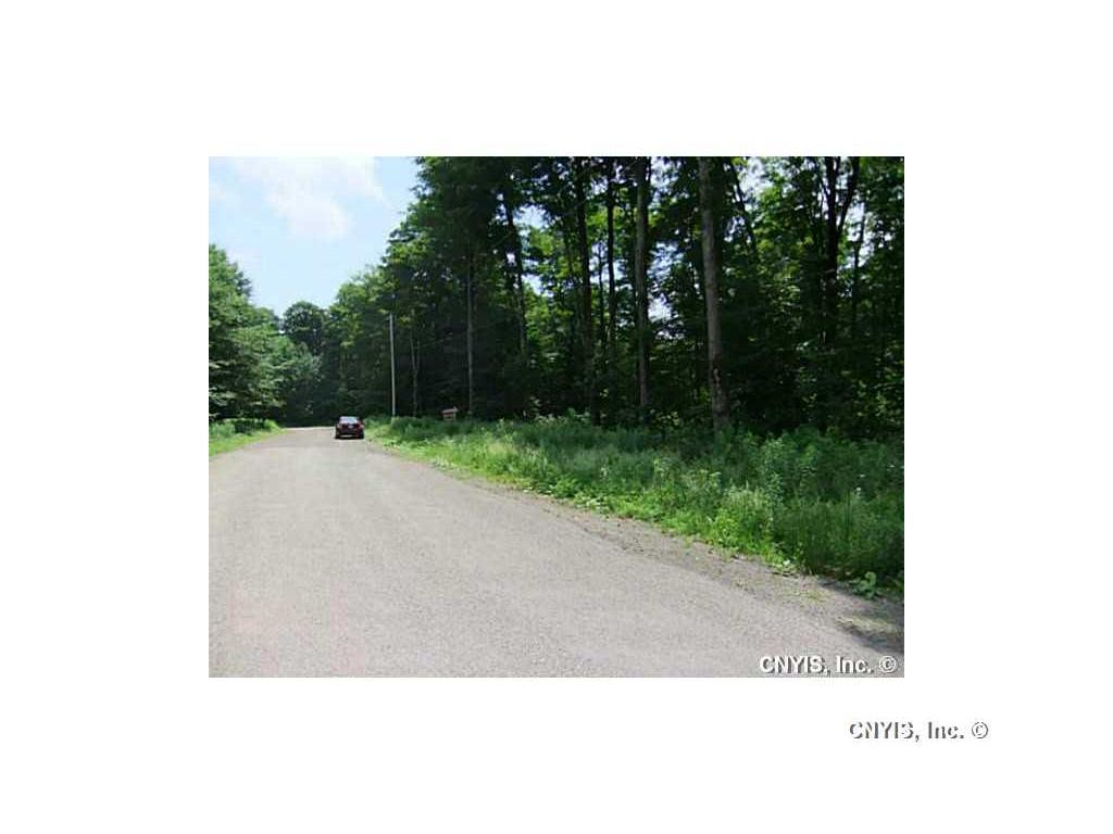 Lot 10 Magpie Lane, Truxton, NY - USA (photo 4)