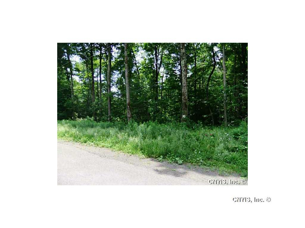 Lot 10 Magpie Lane, Truxton, NY - USA (photo 5)