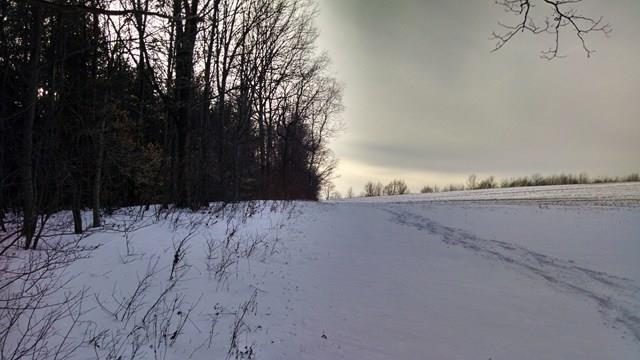 6485 Monteray Sexton Hollow Road, Bradford, NY - USA (photo 4)