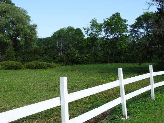 234 County Rd 29, North Norwich, NY - USA (photo 3)