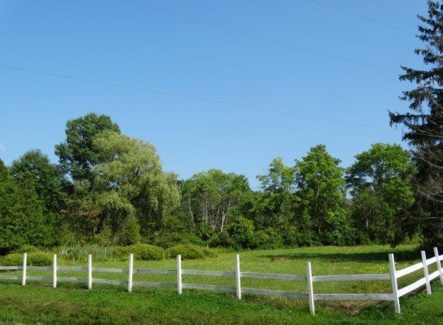 234 County Rd 29, North Norwich, NY - USA (photo 5)