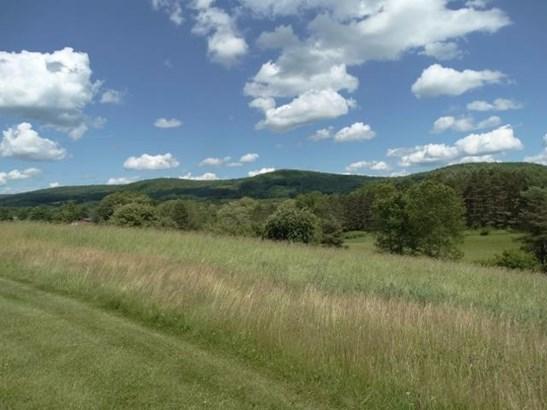 875 County Highway 26, Fly Creek, NY - USA (photo 3)
