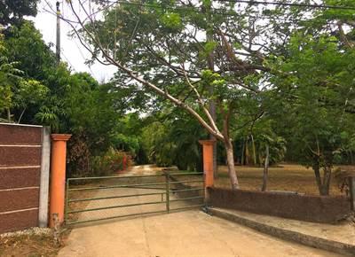 Hacienda Tranquila , Playa Potrero - CRI (photo 1)