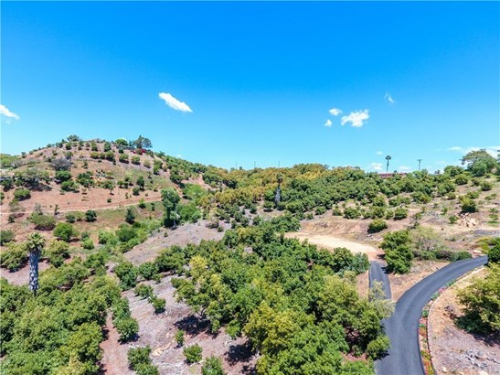 Land/Lot - Fallbrook, CA (photo 4)