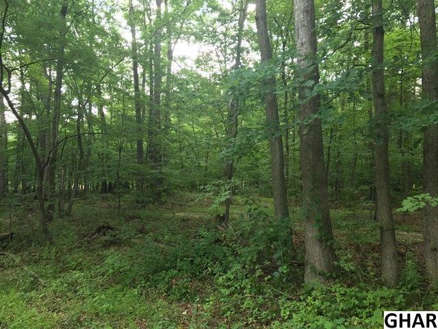 Residential - Boiling Springs, PA (photo 2)