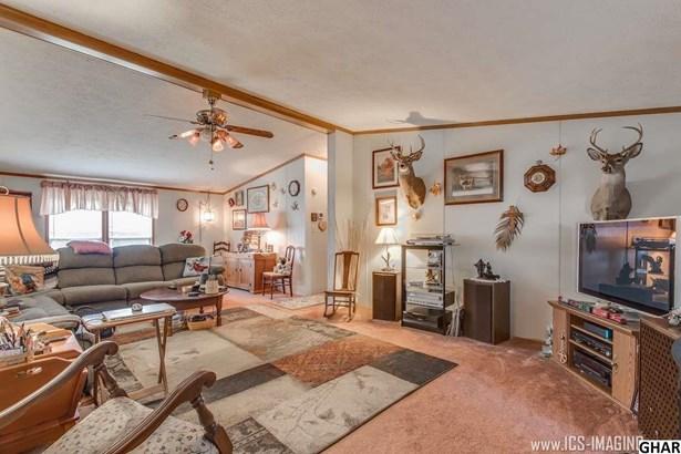 Ranch, Mobile Home/No Land - Shippensburg, PA (photo 5)