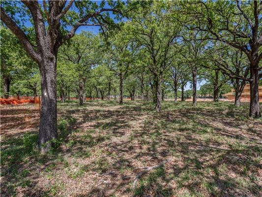 1020 Hatch Court, Southlake, TX - USA (photo 5)