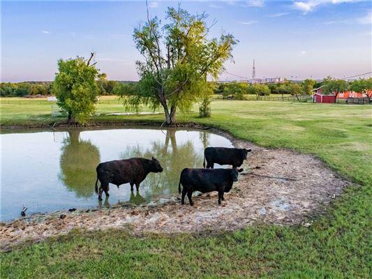 000 Bob Jones Road, Southlake, TX - USA (photo 2)