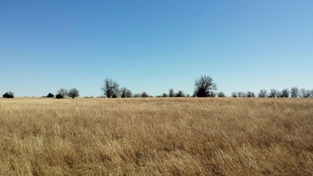 Farm - Burden, KS (photo 2)