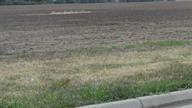 Vacant Lot - Newton, KS (photo 3)