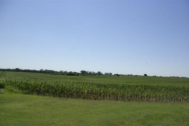 Farm - Conway Springs, KS (photo 1)