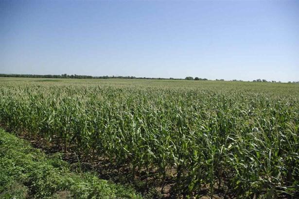 Farm - Conway Springs, KS (photo 2)
