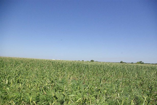 Farm - Conway Springs, KS (photo 3)