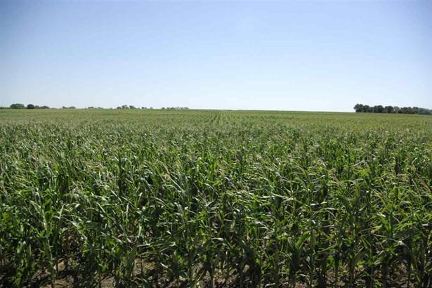 Farm - Conway Springs, KS (photo 4)