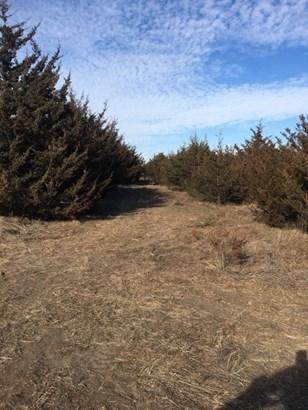 Undeveloped Acreage - Augusta, KS (photo 2)