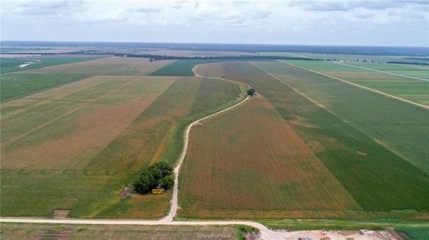 Rural Unimproved - Somerville, TX