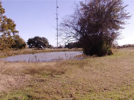 Urban Undeveloped - Snook, TX (photo 1)